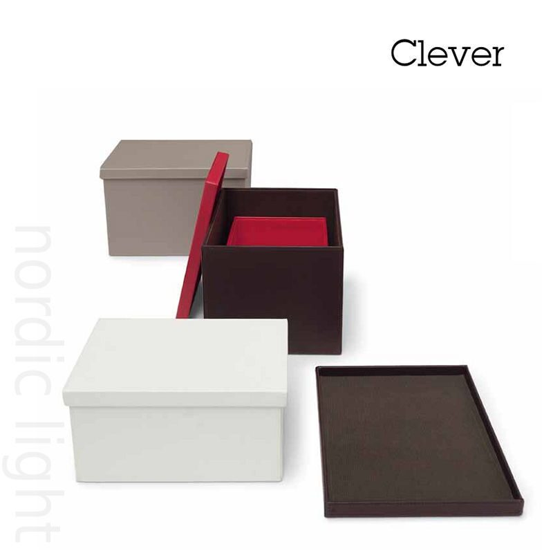 Clever-04
